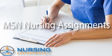 MSN Nursing Assignments
