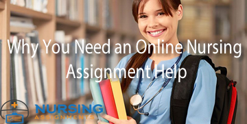 Why You Need an Online Nursing Assignment Help